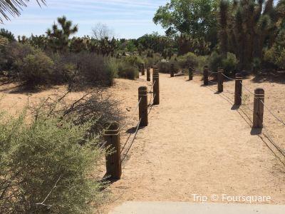 Prime Desert Woodland Preserve
