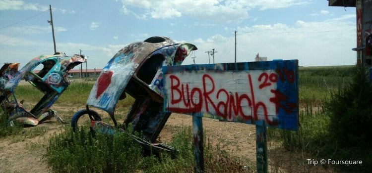 Slug Bug Ranch3