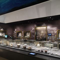 福建博物院用戶圖片