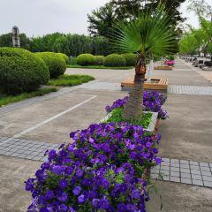 Hongik Park User Photo