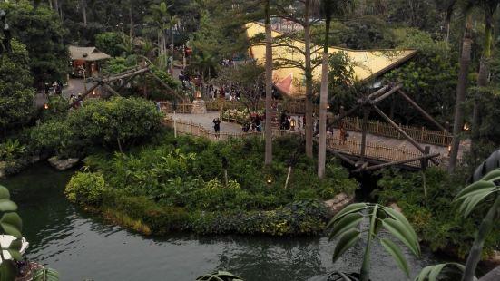 森林河流之旅