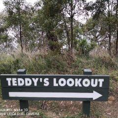 Teddy's Lookout用戶圖片