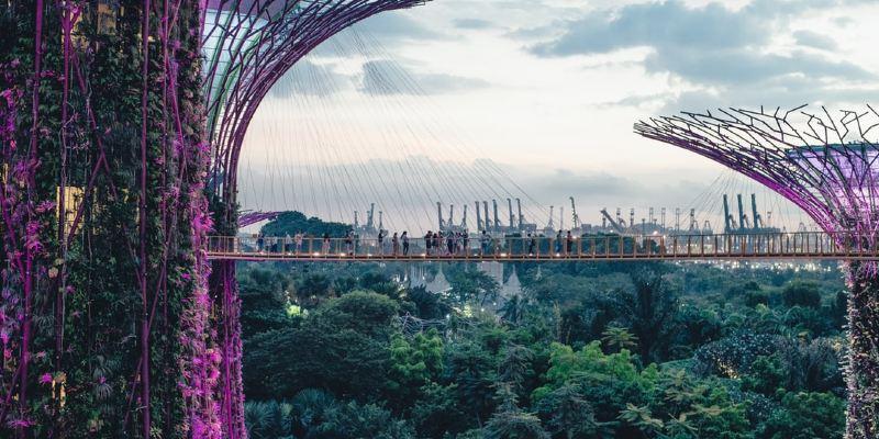 【花園城市】新加坡旅行,好玩又好住!
