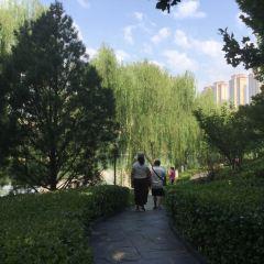 Bandao Park User Photo