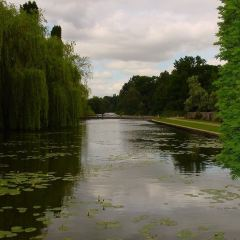Coombe Abbey Country Park User Photo