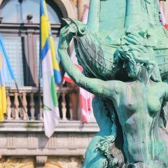 Town Hall (Stadhuis)用戶圖片