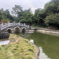 Shijinglin Sceneic Area User Photo