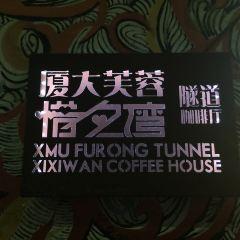 芙蓉隧道用戶圖片