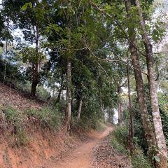 Mount Nannuo User Photo