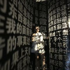 5D Starry Sky Illusion Museum User Photo