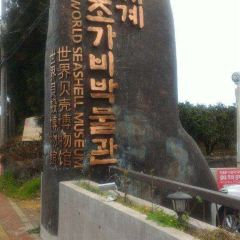세계조가비박물관 여행 사진