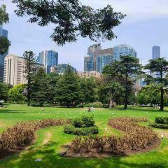 Carlton Gardens User Photo