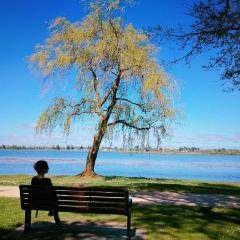 Lake Wendouree User Photo