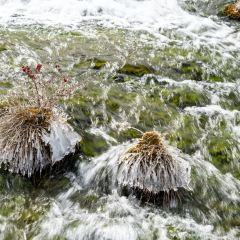 珍珠灘用戶圖片