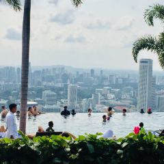Marina Bay Sands Hotel Infinity Pool User Photo