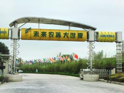 Future Agriculture And Forestry Large World