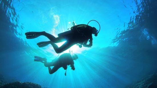 게라마제도 다이빙체험