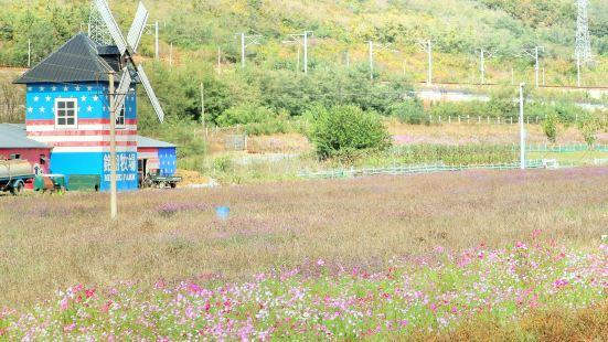 밍후 국제목장