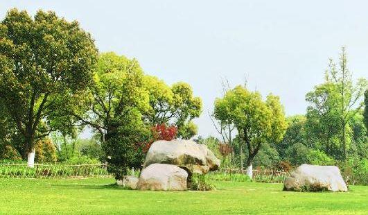 Urban Ecological Forest Park