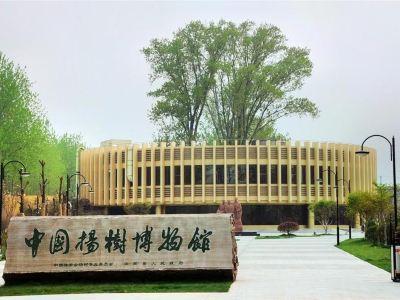 中國楊樹博物館