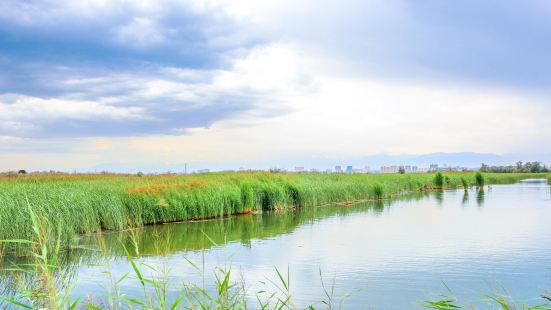 Zhangye National Wetland Park