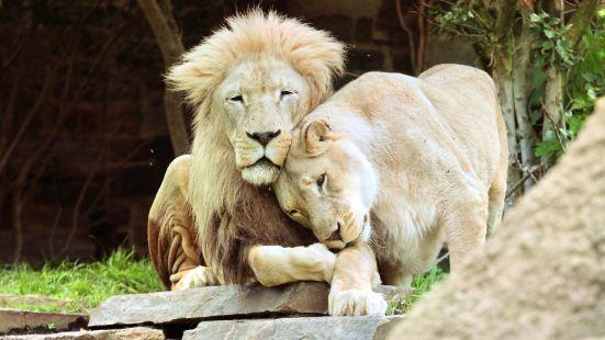 費城動物園