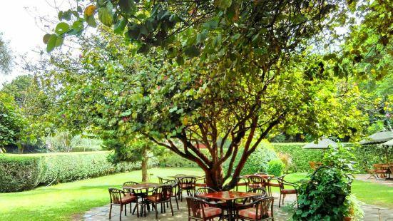 Karen Blixen coffee garden and Cottages