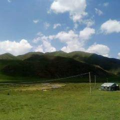 瑪曲草原用戶圖片