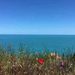 黑海用戶圖片