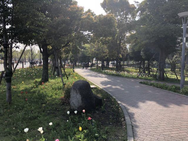 다이버시티 도쿄