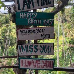 Tegalalang Rice Terraces User Photo