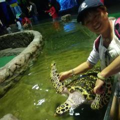 SeaWorld Ancol User Photo