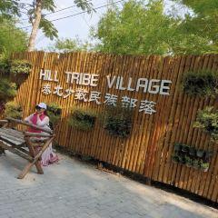 Chiang Mai Town User Photo