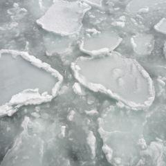 Abashiri Drift Ice Sightseeing & Icebreaker Ship User Photo