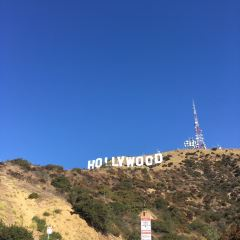 Hollywood User Photo