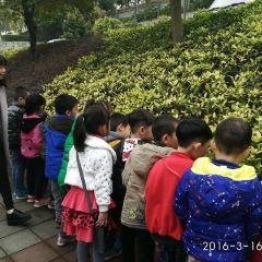 Shenzhen Fenghuangshan National Mining Park User Photo