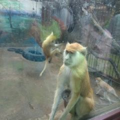 昆明動物園用戶圖片