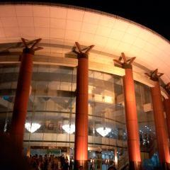 紫金大戲院用戶圖片