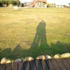 목련 초원 여행 사진