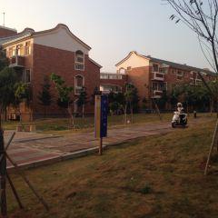 Quemoy University User Photo