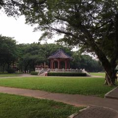 Sun Yat-sen University User Photo