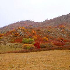 우차이산 여행 사진