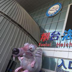 옌타이 하이창 고래&상어 해양공원 여행 사진