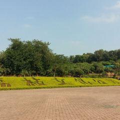 Lichi Cultural Park User Photo