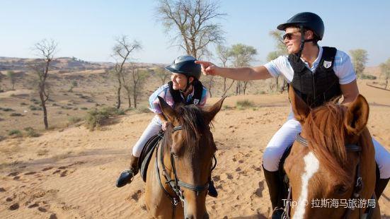 Al Wadi Equestrian Adventure Centre