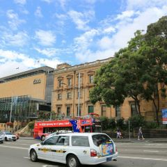 Museum of Sydney User Photo