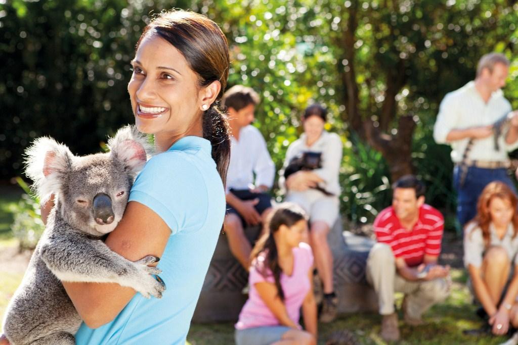 Australia Zoo Tour via Croc Express from Brisbane