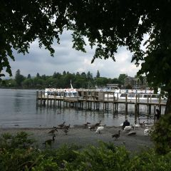 Windermere User Photo