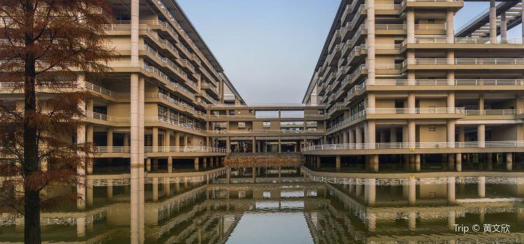 Guangdong University of Techonology2