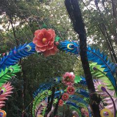 Yuexiu Park User Photo